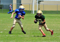 Villages FA Panthers Football 10U